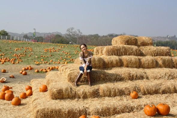 Hay girl, hay! Boots and Leg Warmers: Marshalls